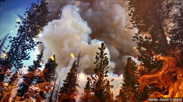 Wildfire forces evacuation in USA state of Montana